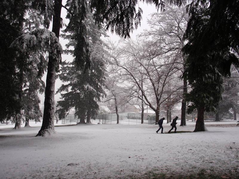 snow in Clark Park