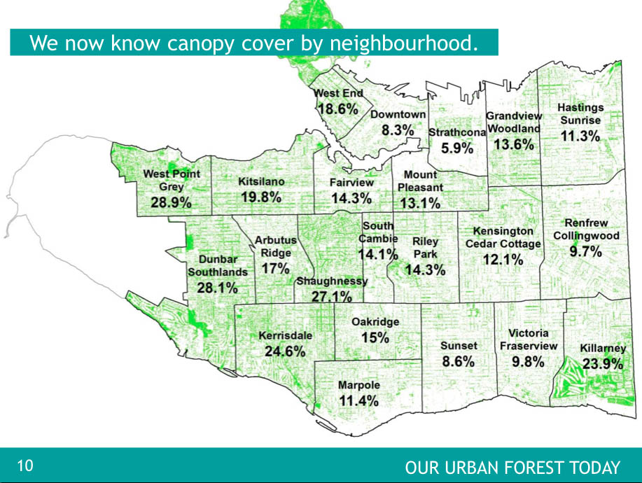 ... staff_report_tree_canopy  sc 1 st  CityHallWatch - WordPress.com & Urban Forest and Tree Removal Bylaw. What more can be done in ...