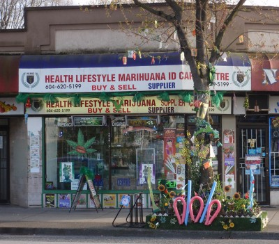 Health Lifestyle Marihuana on Kingsway is located within 250m of an elementary school