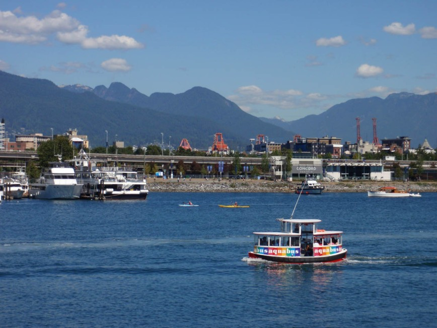 False Creek view