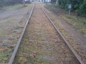 Arbutus CP Rail line work 11-Jan-2016 (17)