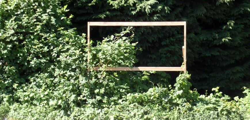 missing rezoning sign