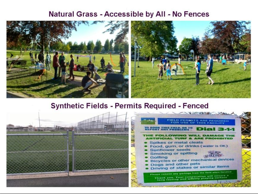 Park Comparison artificial turf vs grass